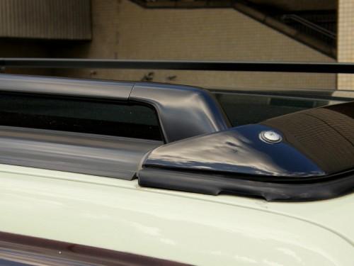 ルーフレールも黒無塗装仕上げ。